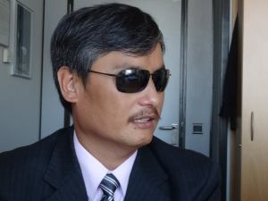 Platform representatives meet Chinese civil rights activist Chen Guangcheng in Brussels